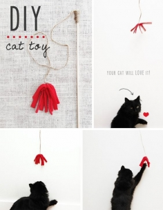 DIY homemade cat toy