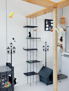 Como criar um cantinho para animais no apartamento?