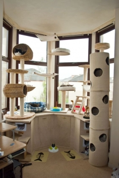 Love it!!! #cats #CatTree CoolKittyCondos.com